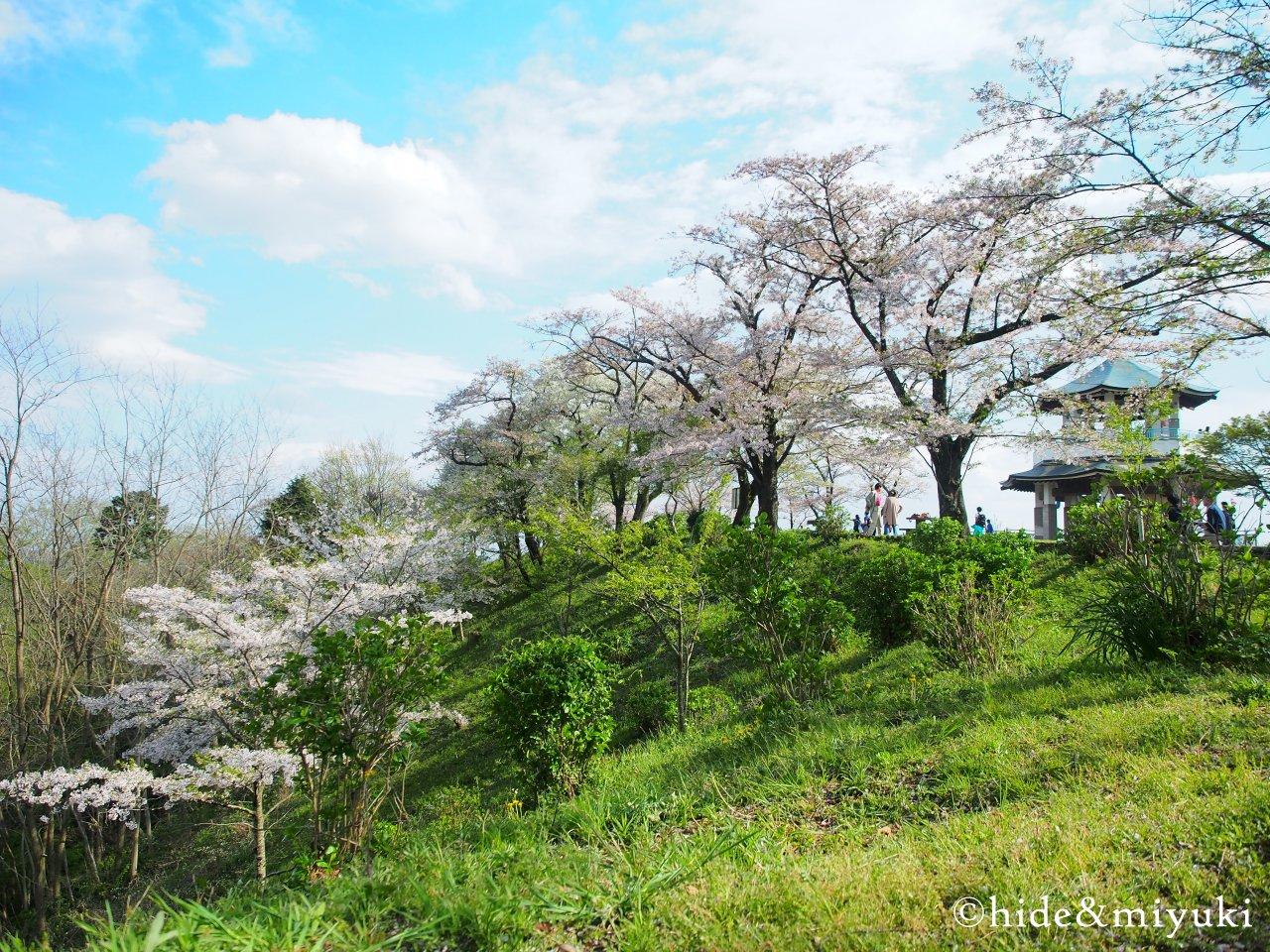 弘法山公園-1