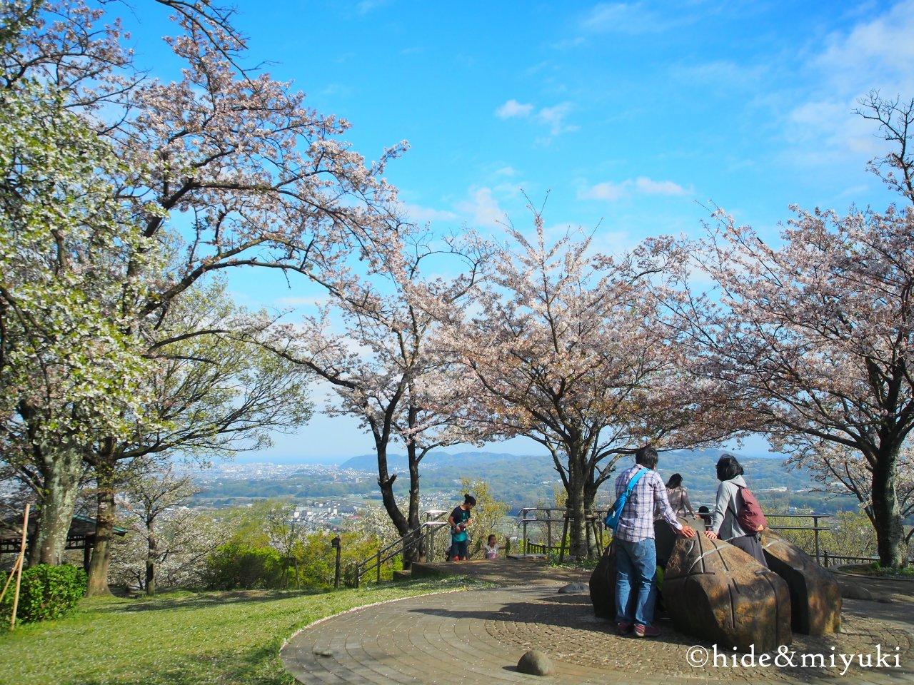 弘法山公園-2