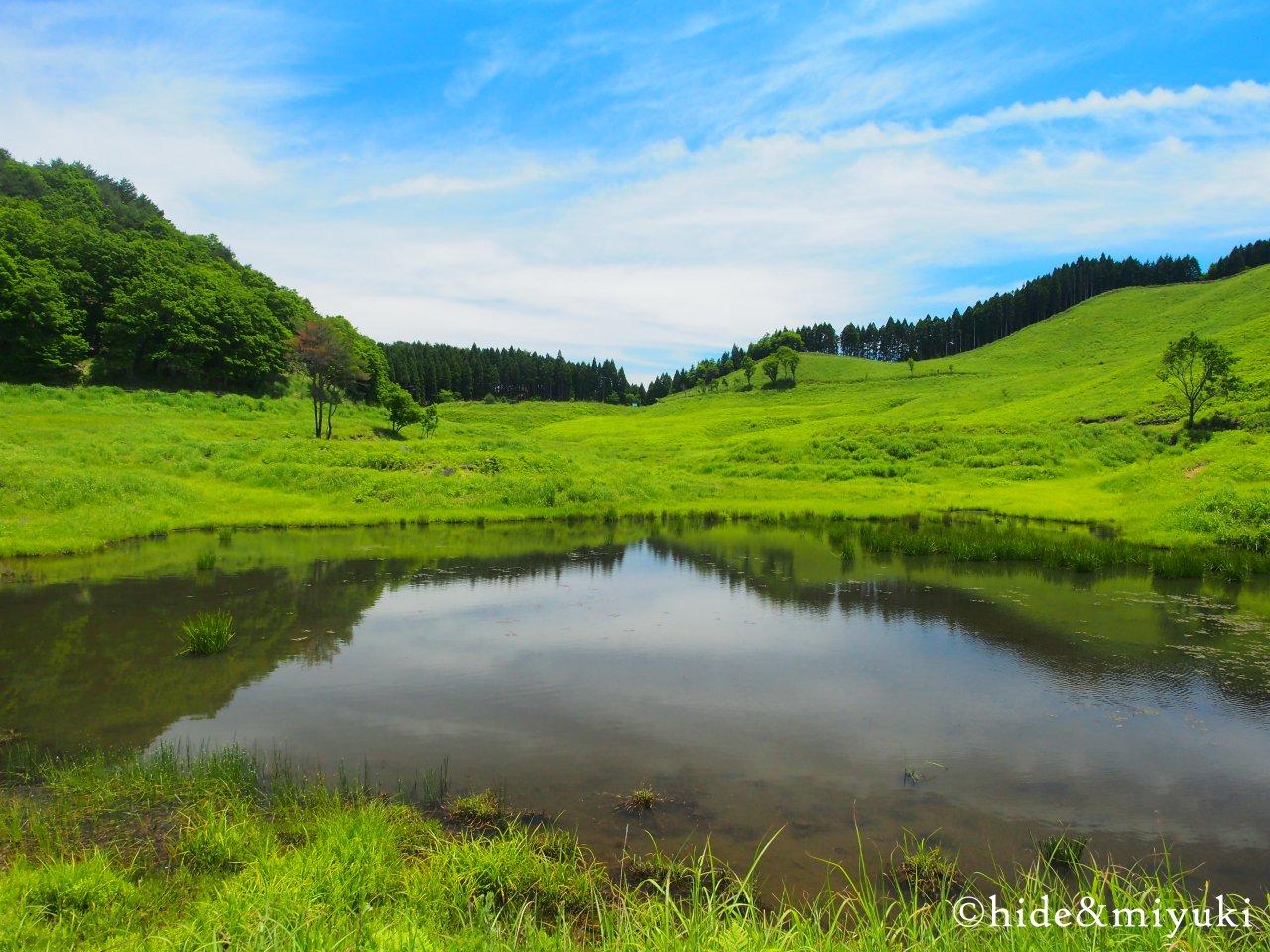 砥峰高原入口横の池