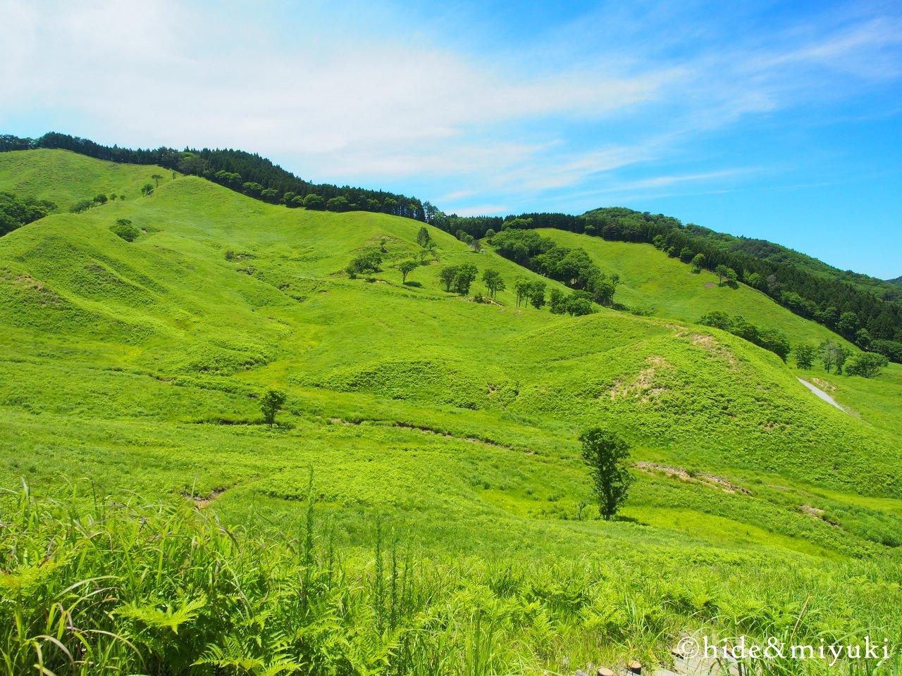 砥峰高原の景色