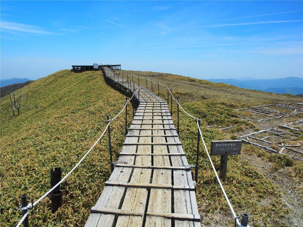 頂上付近は木道になっており歩きやすいです